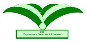 EDE logo original